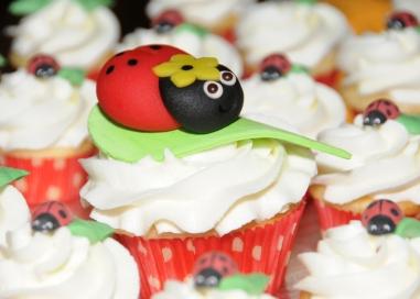 Cupcake coccinelle
