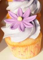 Mini cupcake lavande