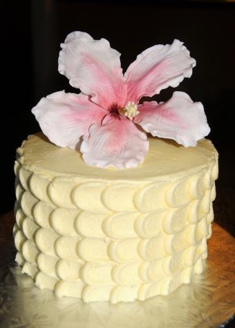 Gâteau de fête 4