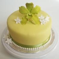 Gâteau de fête 6